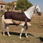 Deka na koně venkovní (výběhová)