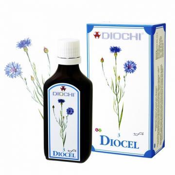 diocel-kapky_5260_8928.jpg