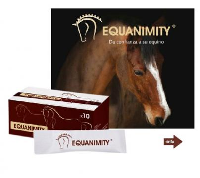 equanimity_4083_7761.jpg