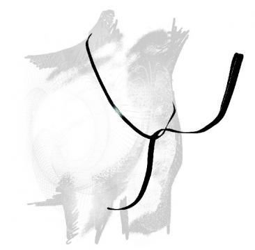 vyvazovaci-remen-vaquera-castecus_3939_7691.jpg